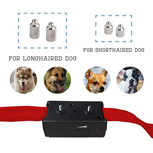 Best Dog Vibration Bark Collar