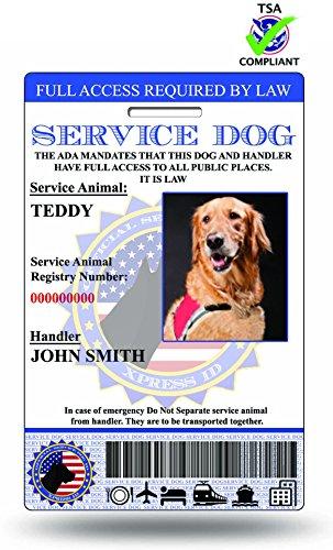 Xpressid Service Dog